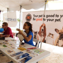 Pet Food Institute Applauds Turks & Caicos Outreach and Education on Pet Wellbeing