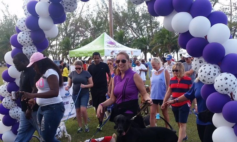 Pet Food Institute-Caribbean sponsors BAARK's Strut Your Mutt Walkathon