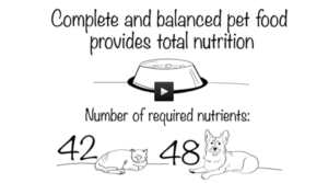The Pet Food Institute (PFI), whose members make 98 percent of all U.S. pet food and treat products, recently released a new video and web content highlighting the manufacturing process for pet food and the safety practices in place.